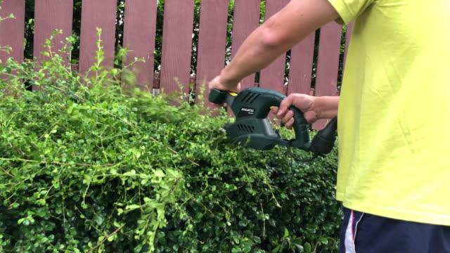 lavori domestici di famiglia insieme, albero da taglio con sega elettrica - giardino pubblico giardino video stock e b–roll