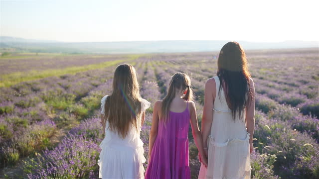 family in lavender flowers field at sunset in white dress and hat - wschodnio europejski filmów i materiałów b-roll