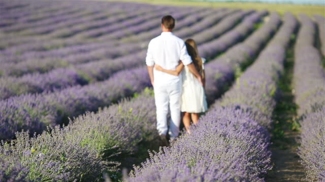 family in lavender flowers field at sunset - nazionalità russa video stock e b–roll