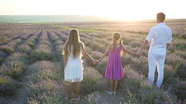 family in lavender flowers field on the sunset - nazionalità russa video stock e b–roll