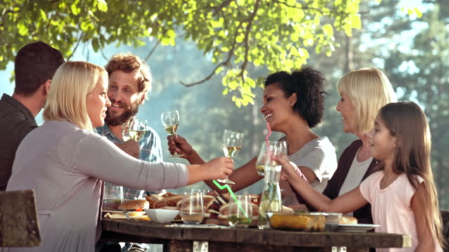 Family making a toast at the picnic table video