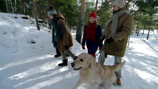 4 人家族と犬 - 家系図点の映像素材/bロール