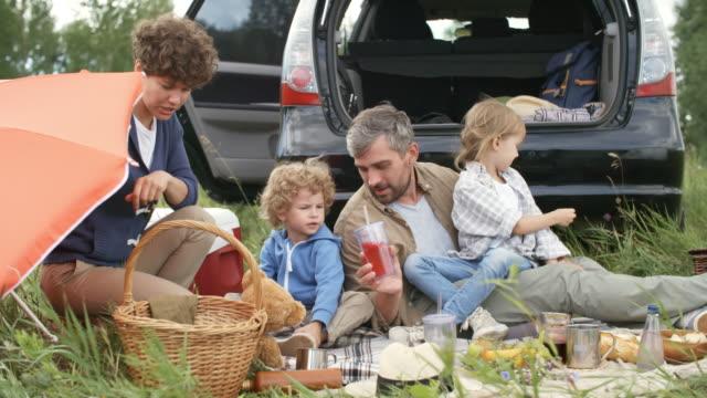 ピクニックを楽しむ 4 人家族 - ピクニック点の映像素材/bロール