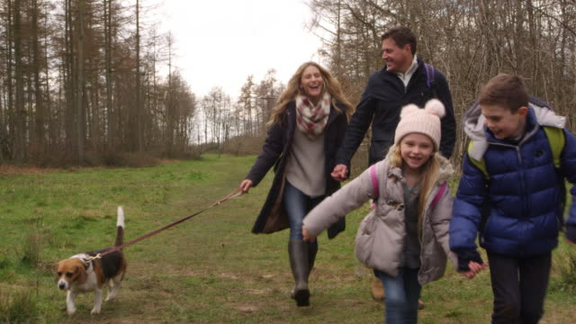 Family of four with pet dog walking in woods, shot on R3D video