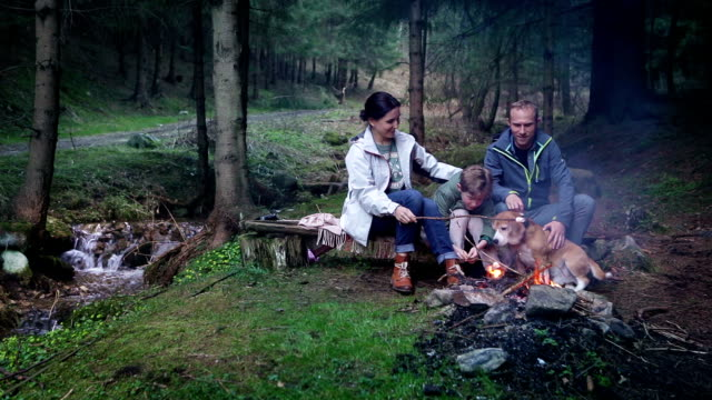 Family of three and a beagle dog sit by the bonfire in the forest near the brook and talk video