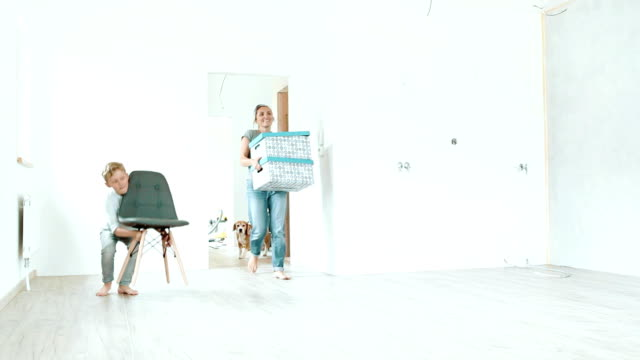 familie von drei und einem hund geben sie ihre neue wohnung mit kisten und möbel - neues zuhause stock-videos und b-roll-filmmaterial