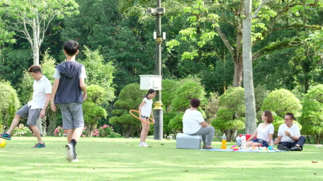 Family on a picnic at the park An Asian family have a fun picnic at the public park, the young girl plays with her hoola-hoop and the father and son kick a ball to each other natural parkland stock videos & royalty-free footage
