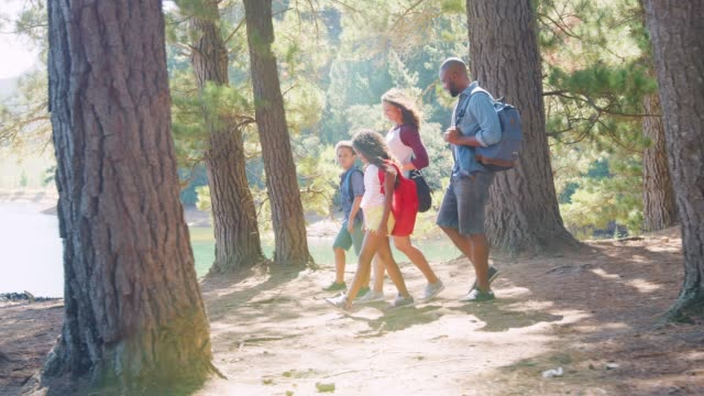 Family On Hike Walking Along Path Through Woods Next To Lake Side view of family on hike walk along path through woodland next to lake - shot in slow motion hiking stock videos & royalty-free footage