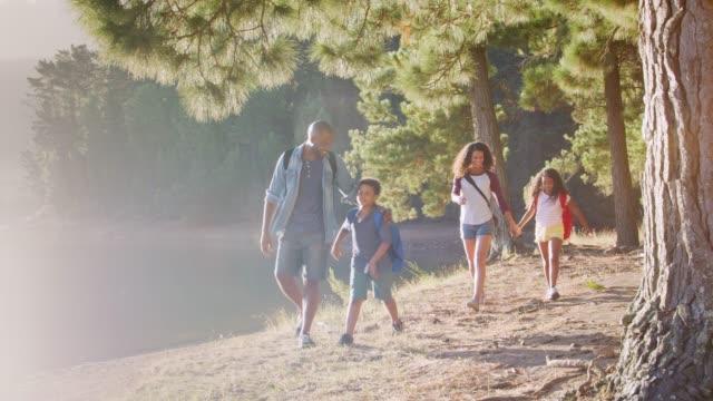 湖の横にある森の中の小道を歩いてハイキングに家族 ビデオ