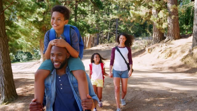 Family On Hiking Adventure Through Forest Family on hike with father carrying son on shoulders walk along path through woodland towards camera - shot in slow motion holiday stock videos & royalty-free footage