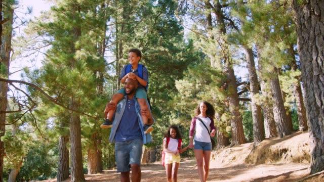 family on hiking adventure through forest - viaggiare zaino in spalla video stock e b–roll