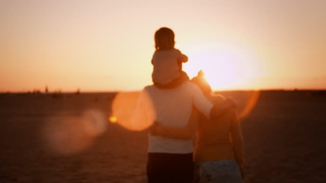 Family on the Beach Selected Takes - Shot on RED Epic love emotion stock videos & royalty-free footage