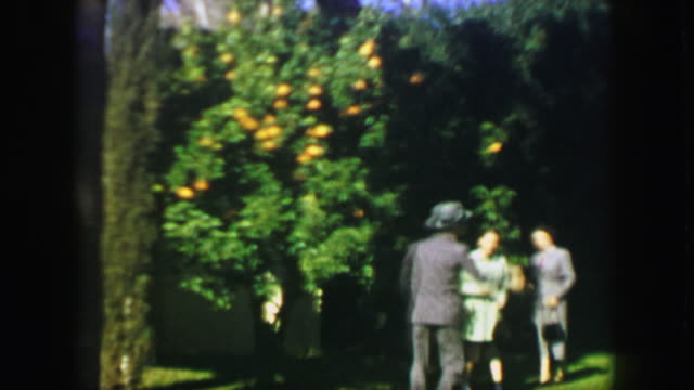 1947: Family picking orange tree happy fruit tossing formal suit coat dress. video