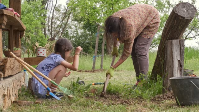 Family planting a flowers in the garden.