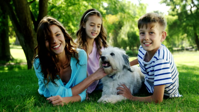 family playing with their dog in the park - fedeltà video stock e b–roll