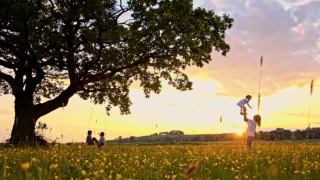 rallent famiglia rilassante nella natura al tramonto - relazione umana video stock e b–roll