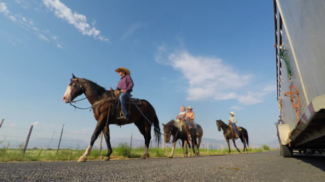 Family Riding Horses on a Country Road video