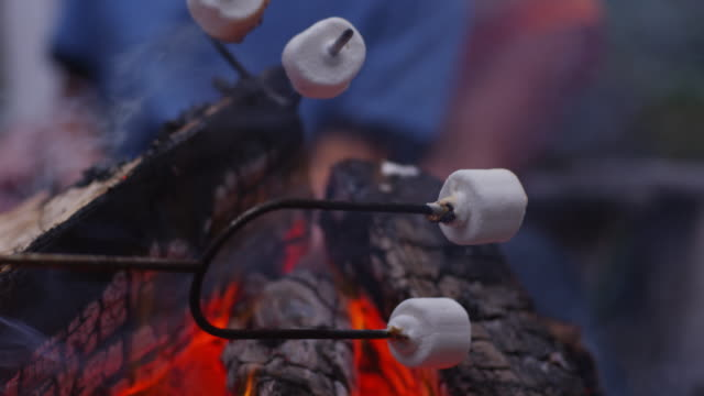 Family roasting marshmallows by outdoor fire. Family roasting marshmallows by outdoor fire. Shot on RED EPIC for high quality 4K, UHD, Ultra HD resolution. marshmallow stock videos & royalty-free footage