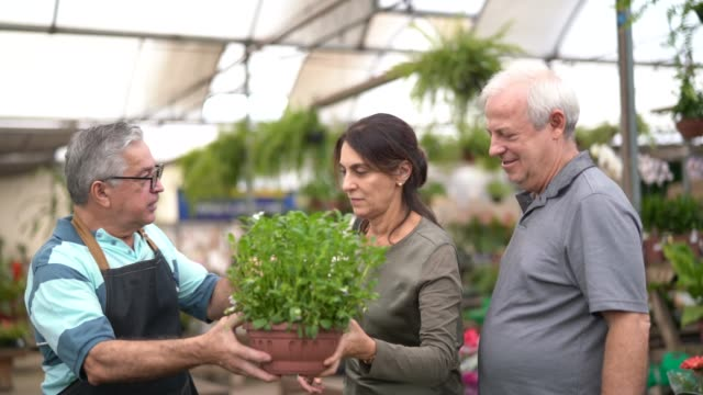 Family shop for plants with Salesman at Flower Market