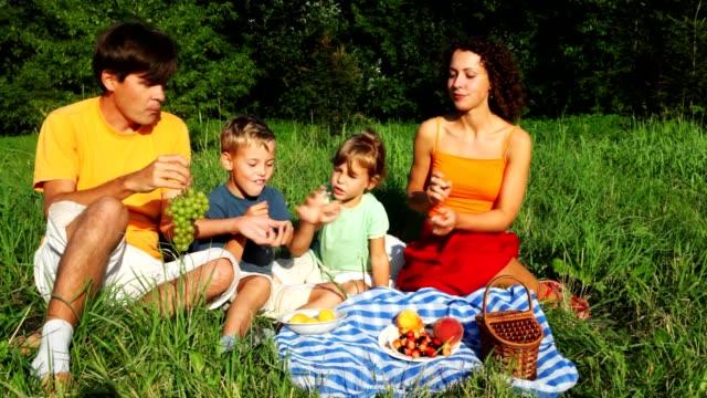 famiglia si trova sul prato e mangia frutta - pesche bambino video stock e b–roll