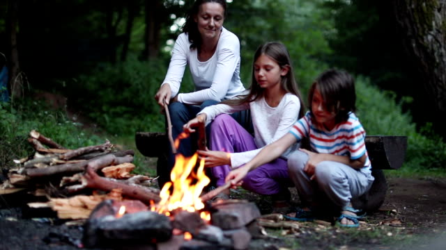 Family sitting next to the camp fire Mother with her children sitting next to the camp fire in nature at dusk. They are happy and playful. only boys stock videos & royalty-free footage