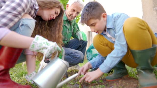 Family taking care of their garden