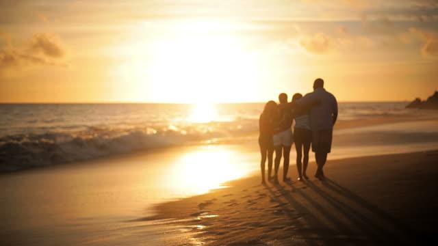 stockvideo's en b-roll-footage met family walk away from camera - vier personen