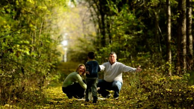 family walk in the woods - hund skog bildbanksvideor och videomaterial från bakom kulisserna