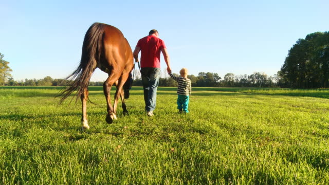 HD CRANE: Family Walking A Horse video