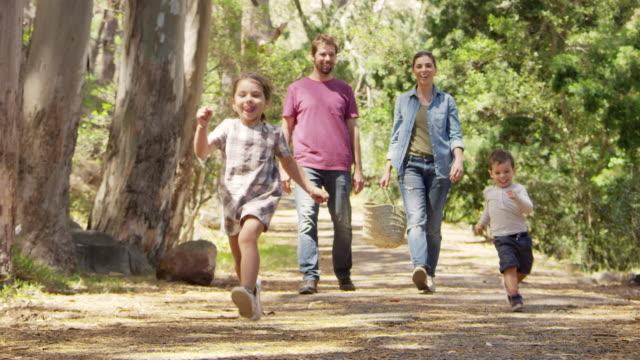 familjen promenader längs stigen genom skogen tillsammans - liten skog bildbanksvideor och videomaterial från bakom kulisserna