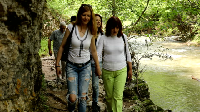 Family walking in forest - vídeo