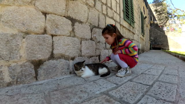 family walking narrow street and looking kitten - mika video stock e b–roll