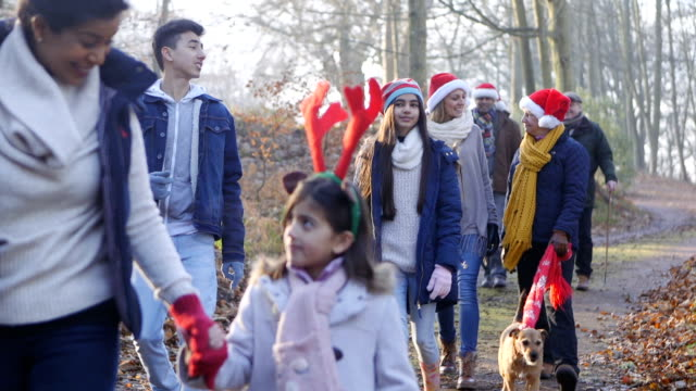 家族クリスマスの森を歩く - サンタの帽子点の映像素材/bロール