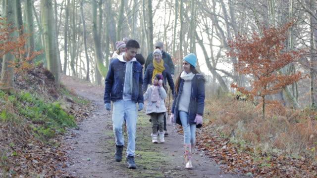 Família caminhando pela floresta - vídeo
