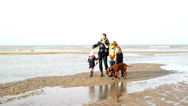 WS TS Family with dog walking on beach video