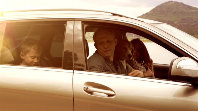 Family with their dog get in a car, fasten their seat-belts and set off video