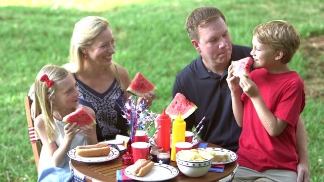 Family with two children at July 4th picnic