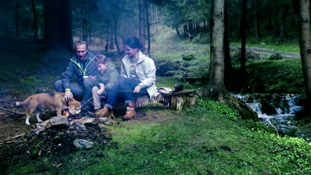 Family's having a picnic in the forest, sitting in front of the bonfire video