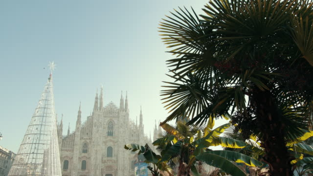 Famous Duomo Cathedral In Italy, Milan, Metal Frame Christmas Tree, Palm Trees
