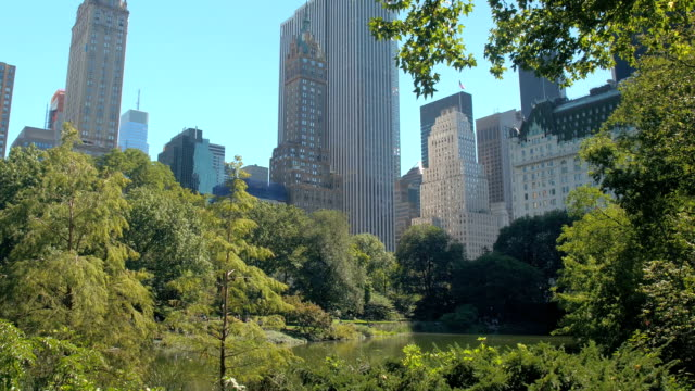 LOW ANGLE VIEW: Famous Manhattan skyline view from New York City Central park video