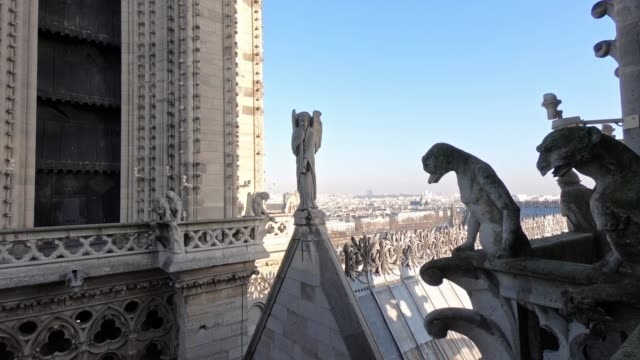 4k famous statue and gargoyle on the roof of notre dame cathedral in paris - gargoyle video stock e b–roll