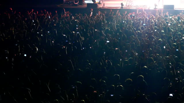 Fans dance and jump during a rock concert.