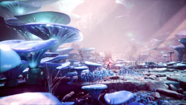 fantastische blaue pilze und rote blumen in einem zauberwald. schöne magische pilze im verlorenen wald und glühwürmchen mit dem nebel. - traumhaft stock-videos und b-roll-filmmaterial