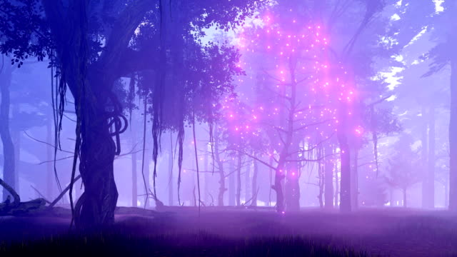Fantasy tree with magical lights in misty night forest