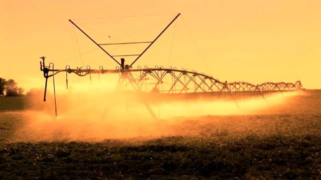 farm bewässerung - bewässerungsanlage stock-videos und b-roll-filmmaterial