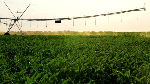 Farm Irrigation Watering Movement video