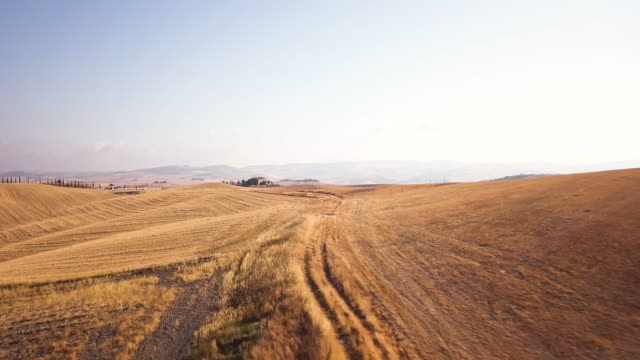 Farm of Val d'Orcia video