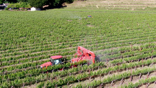 farm tractor spraying pesticides & insecticides herbicides over green vineyard field - insetticida video stock e b–roll