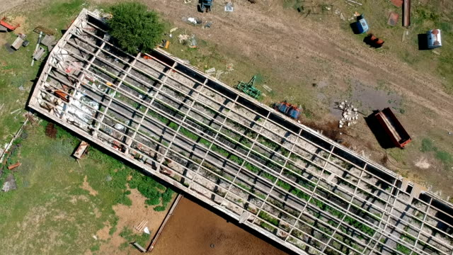 vídeos de stock e filmes b-roll de a farm with a destroyed greenhouse and a flock of pigeons flying above it - terreno