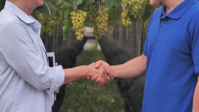 Farmer and businessman shaking hands.Close up view of a farmer and customer shaking hands,business concept,success concept.asia concept